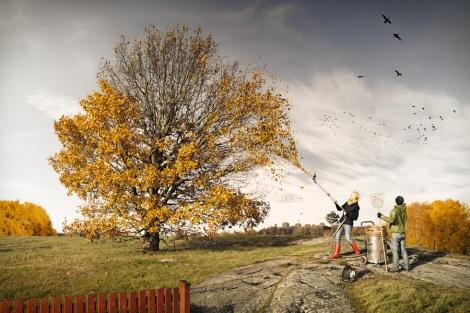last-fall